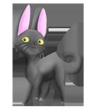 stray cat strut by camychan