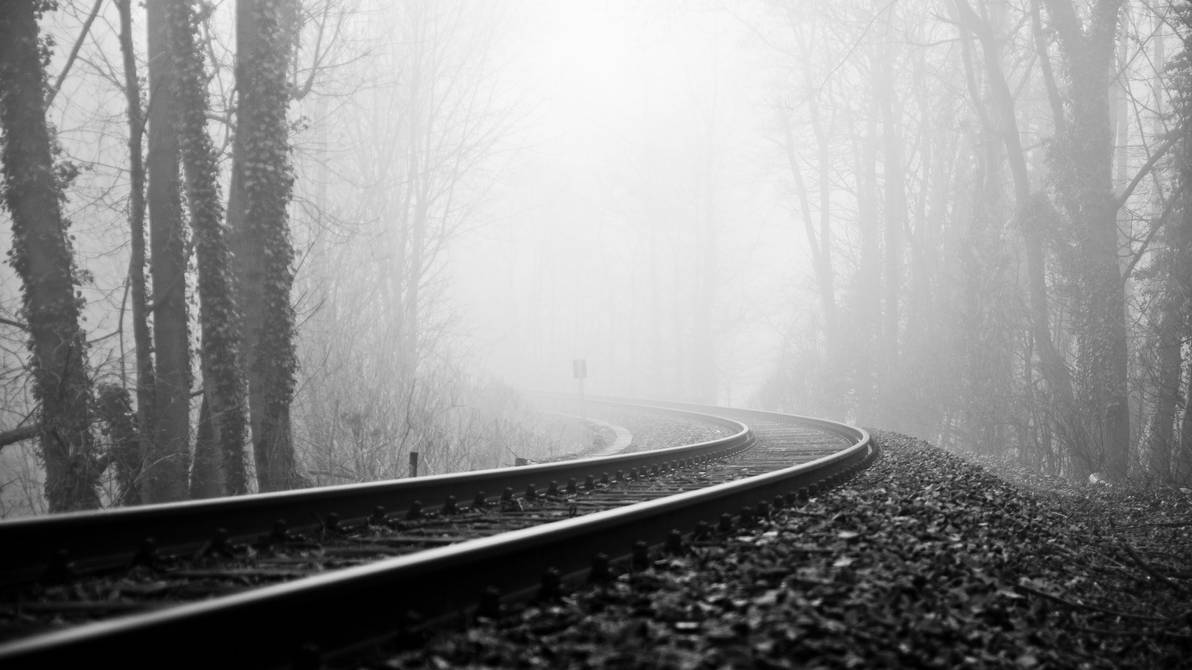 Awesome Black And White Trees and Railroad (RARE) by ROGUE-RATTLESNAKE