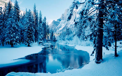 Beautiful Snow Cover Trees and Mountains by ROGUE-RATTLESNAKE