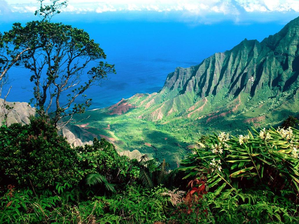 Kalalau Valley on the Na Pali Coast of Kauai by ROGUE-RATTLESNAKE