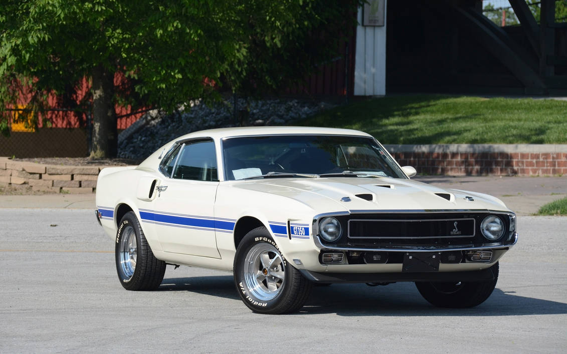1969 Shelby Gt350 Fastback By Rogue Rattlesnake