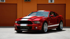 2014 Ford Shelby GT500 Super Snake