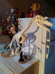 Velociraptor Skeleton Papercraft