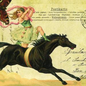 postallove's Profile Picture