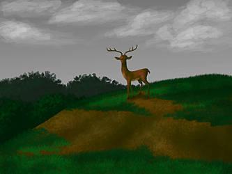 Deer by Blondbraid