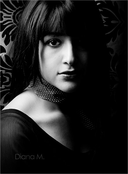 noir 2 by dianasabbath