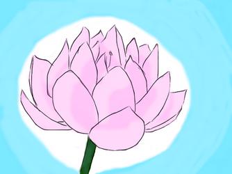 Pretty Lotus Flower by Chrome-Fuwatari
