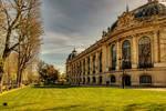 Le Petit Palais 3