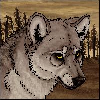 roanoke - sketch by savage