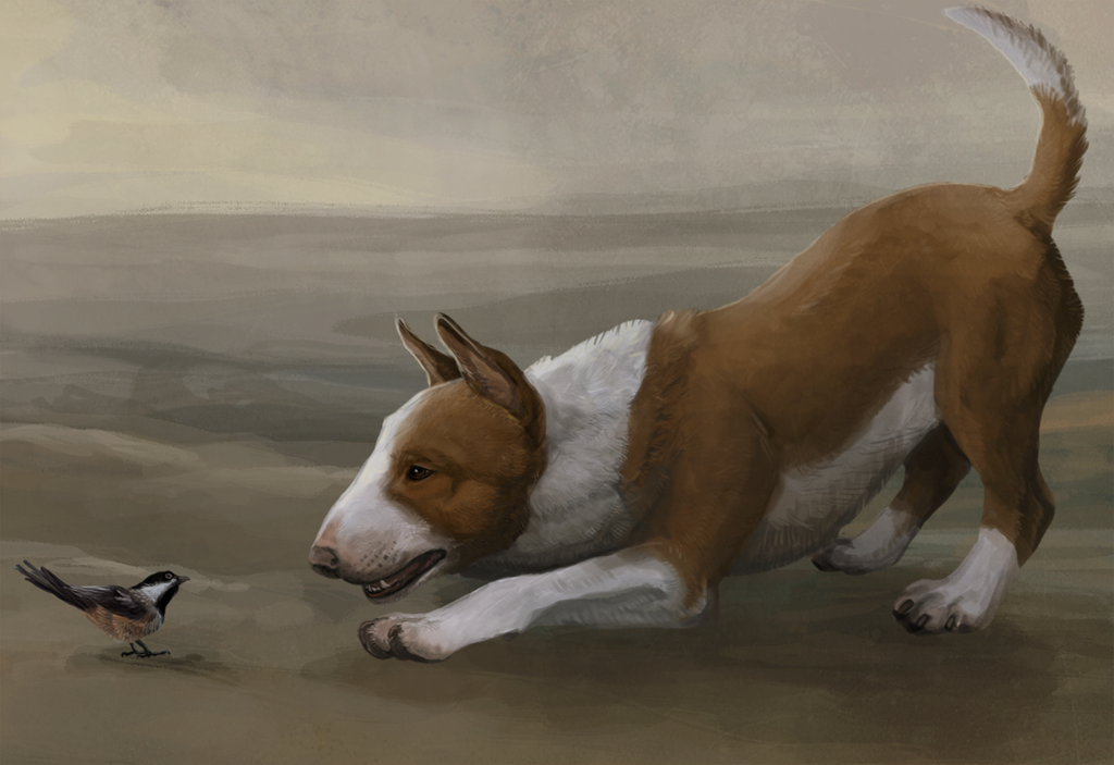 DAILY INSPIRATION: The Terrier by savage