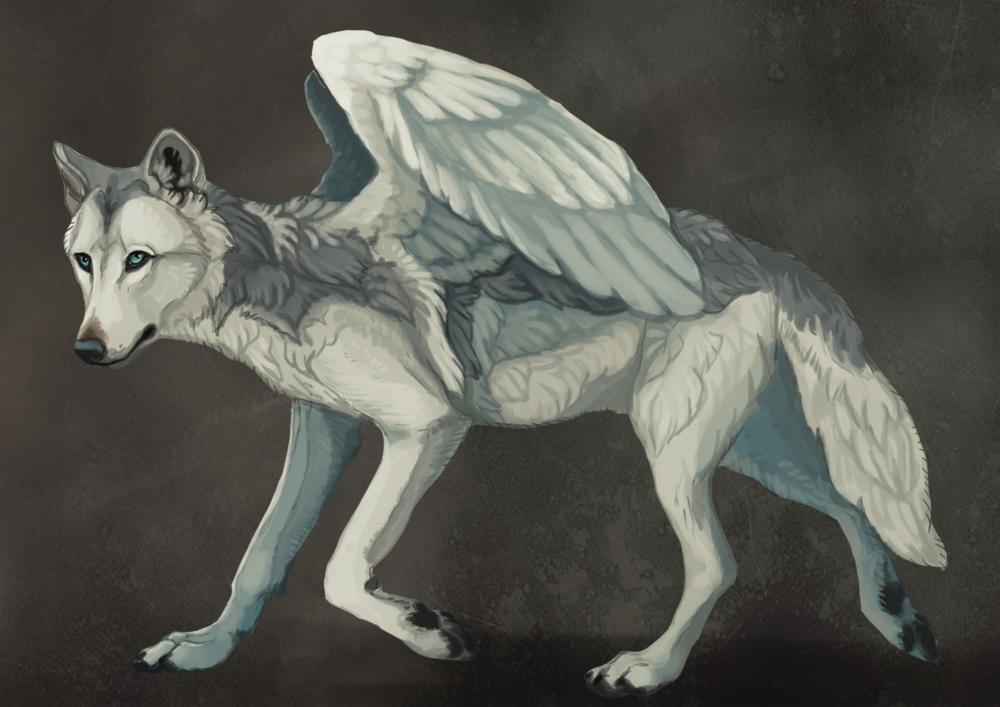 Commission: Whitepup (Jasper) by savage