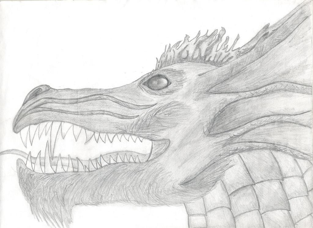 Dragon #4/4 by beastvamp
