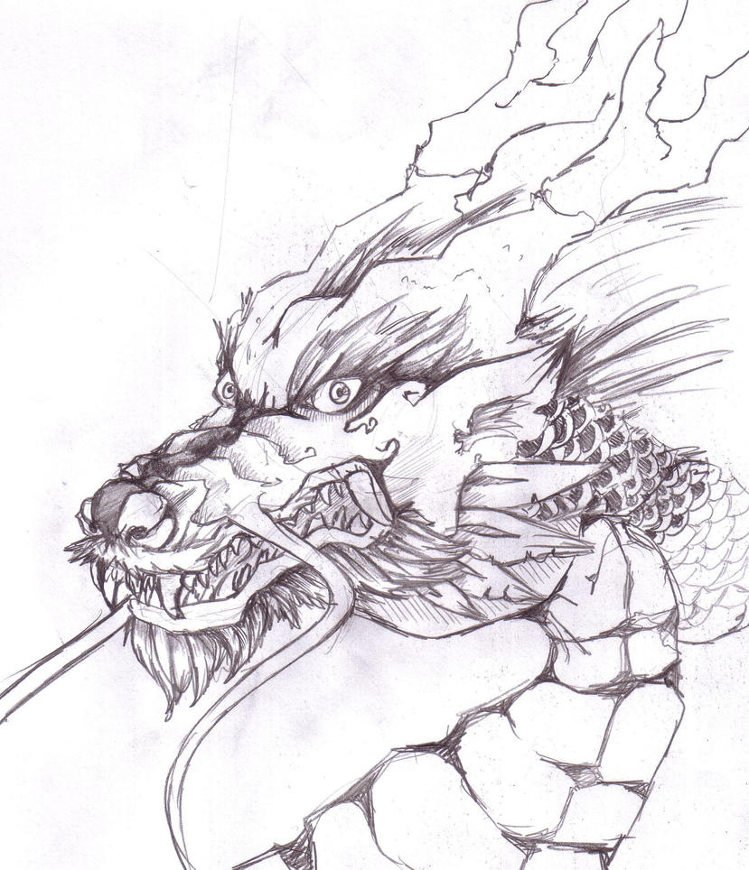 Drawing Of Chinese Dragons | www.imgkid.com - The Image ...