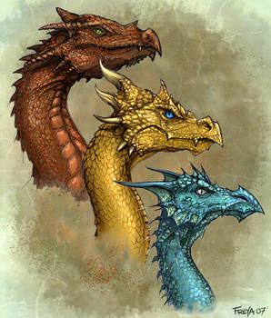 Dragon Broods