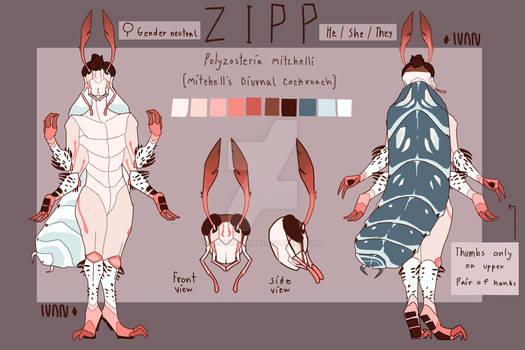 Zipp .:REFERENCE SHEET:.