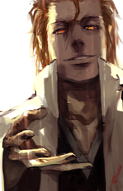 another aizen by tobiee