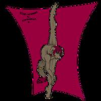 Shenki - Collab with la-patate-volante