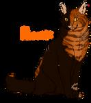 Pheonix // Warrior // Stagclan