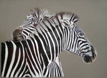 Zebras by Lin-a-art