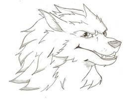 Practice..Wolf-san