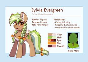 Sylvia Evergreen Reference Sheet