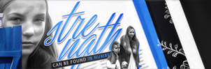 Strength in Numbers Banner