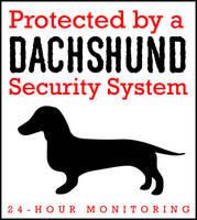 Dachshund Security System