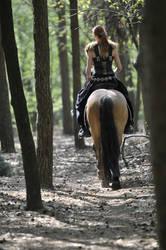 walking horse by Megan1970