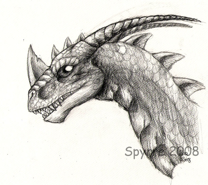Drawings Of Dragons Realistic Realistic spyro-sketch byDrawings Of Dragons Realistic