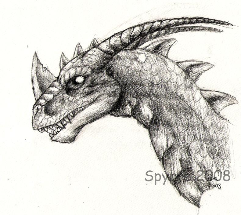 Realistic spyro sketch by spyrre