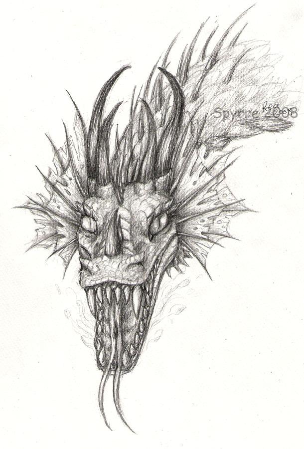 Dragon Face-sketch By Spyrre On DeviantArt