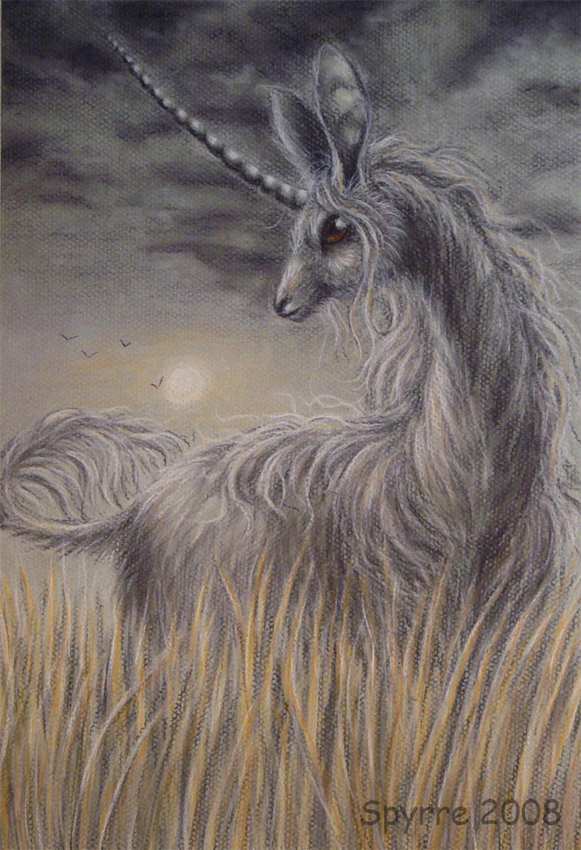 Unicorn in the field by Spyrre