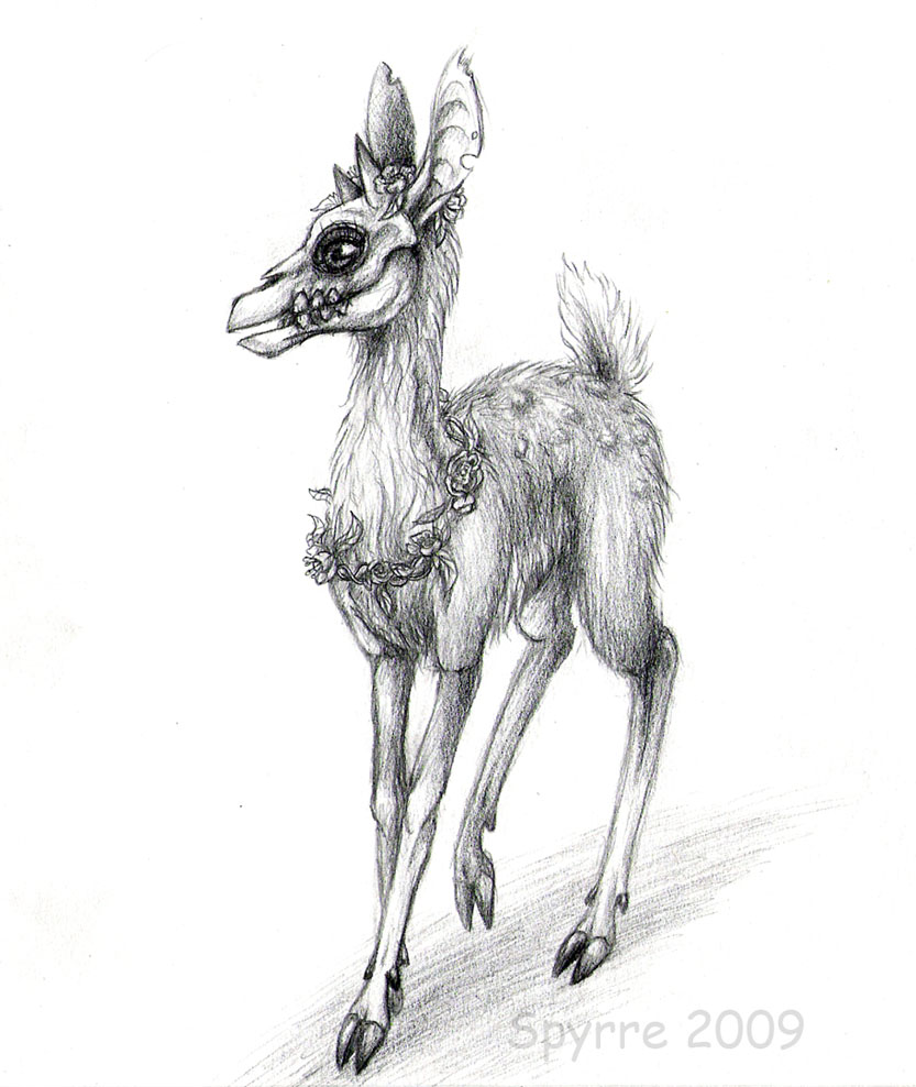 random deer sketches again the endless forest