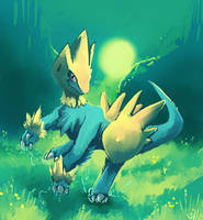 Manectric used Sunny Day by salanchu