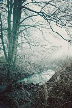 misty landscape 02