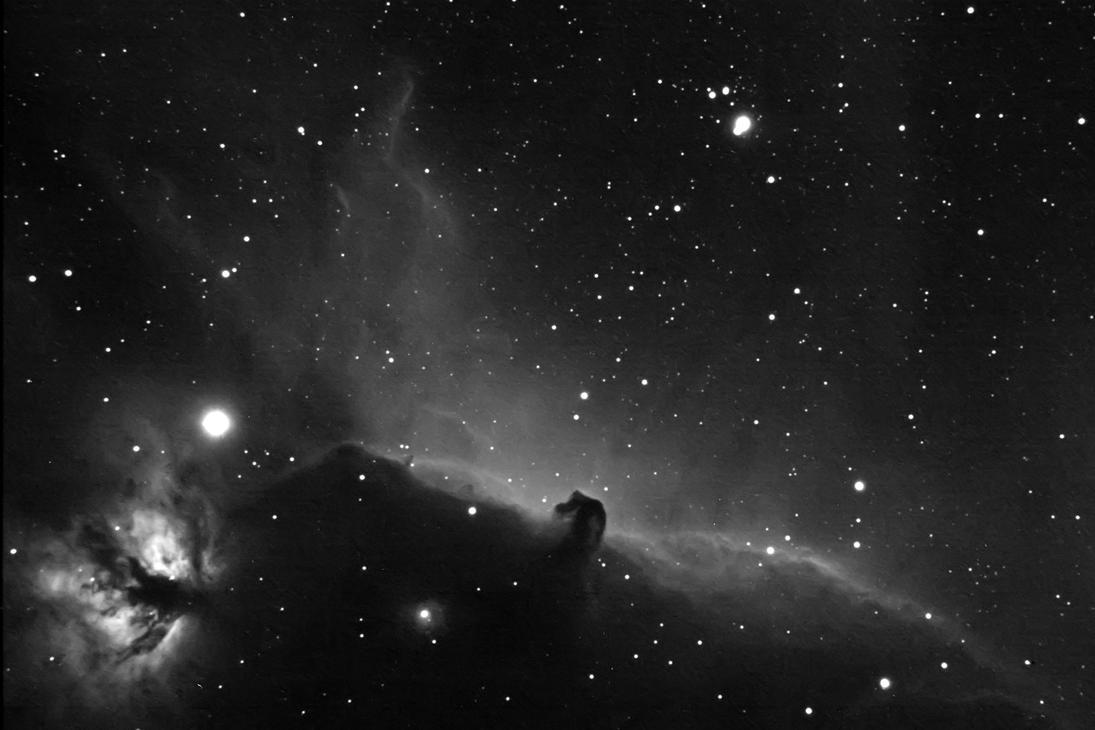 HorseHead nebula by frenchbear