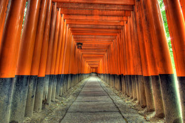 Lost in Torii by frenchbear