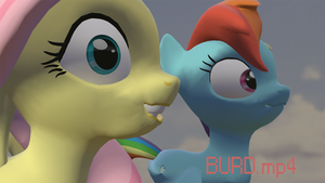[SFM Ponies] Burd.mp4 (Animation-Link in Desc.) by WitchTaunter