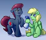 Spray Bottle Horses Commission