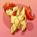 Maple Horse Commission
