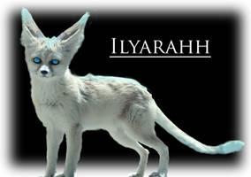Ilyarahh