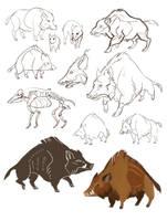 boars by morteraphan
