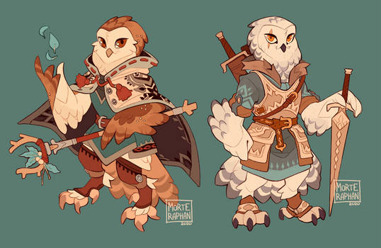 Barn Owl Magician and Snowy Owl Warrior