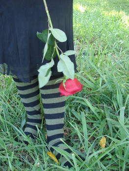 Forcky with socks.. and rose
