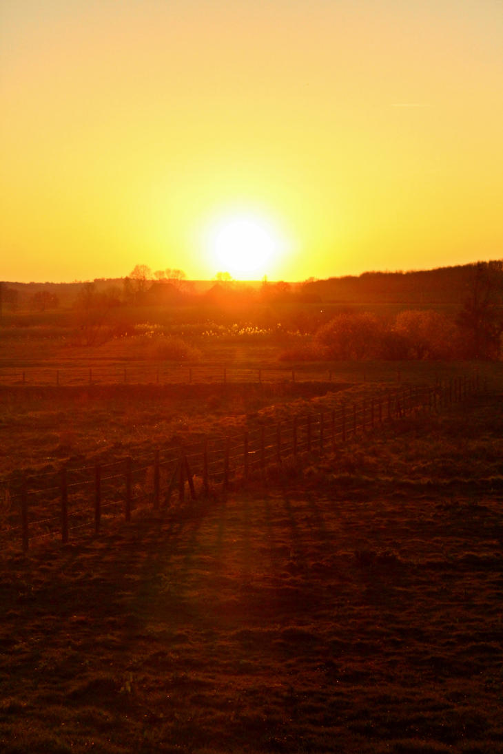 golden sun by betteporter
