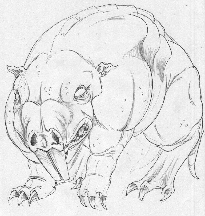 mole animal drawing