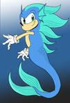 Sonic The Merhog by mjwills