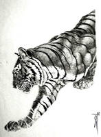 Tiger by Sieco