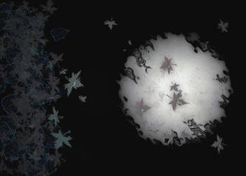 Leaves on a Moonlit Water by CCMars