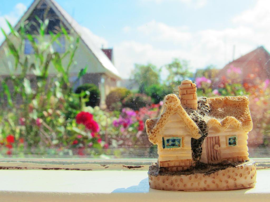 Home by MissMatix